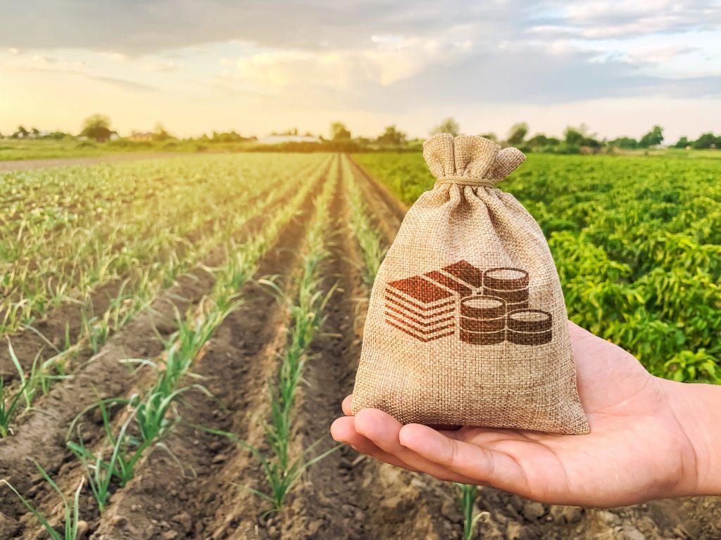 net operating losses farmer concept